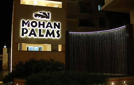 Mohan Palm Gallery